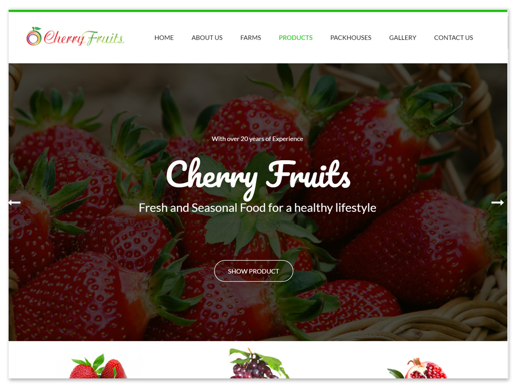 Cherry Fruits | Web Solutions