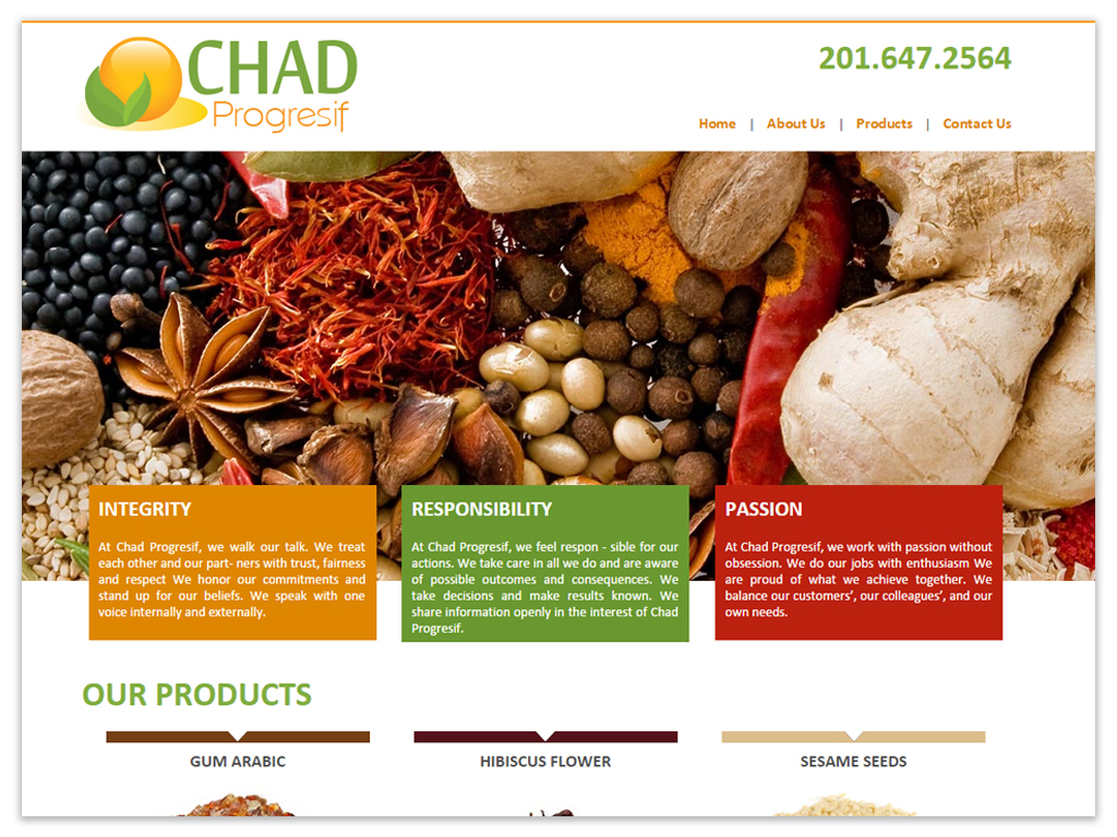 Chad Progresif | Web Solutions
